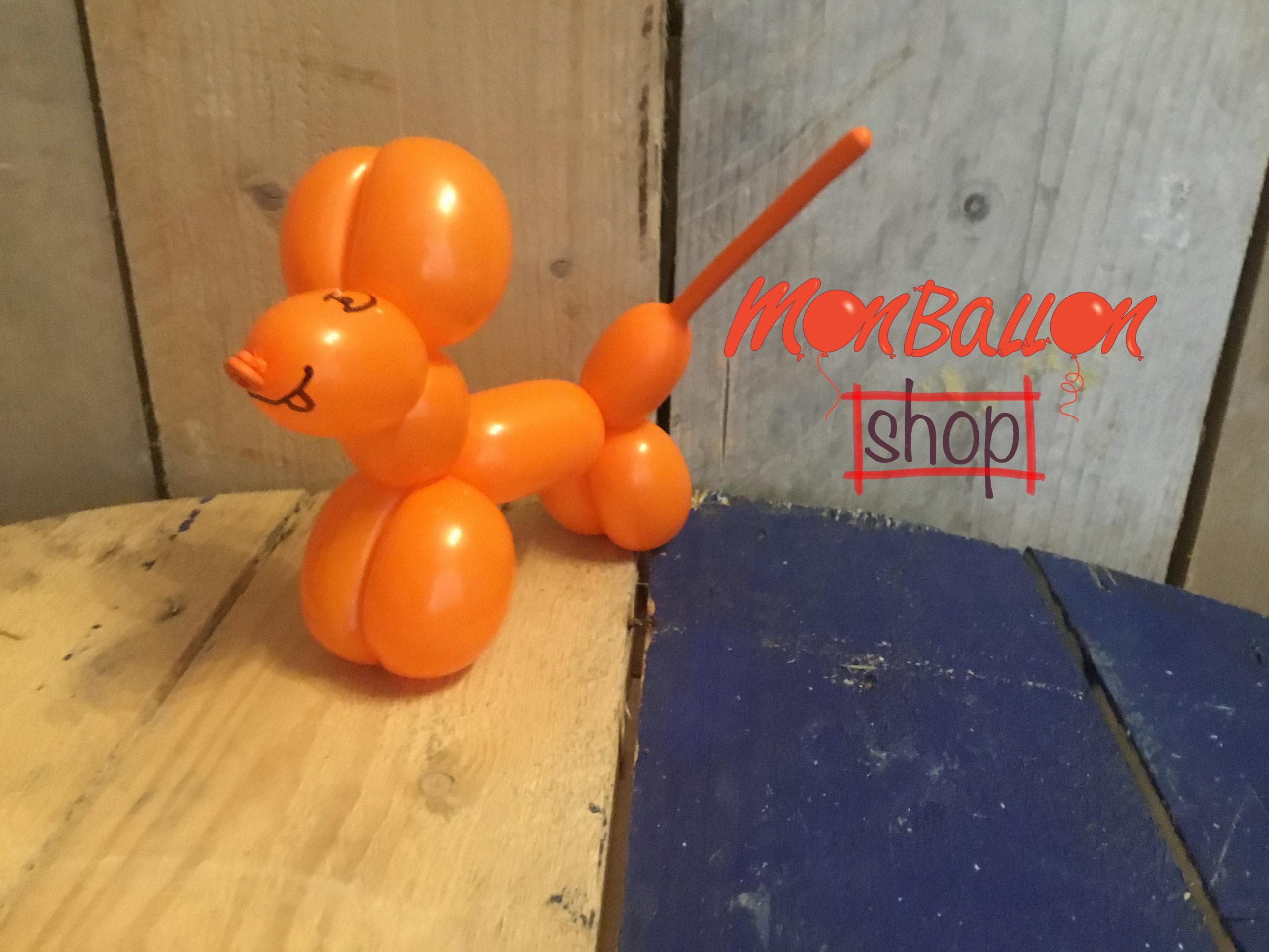 ballonhondje